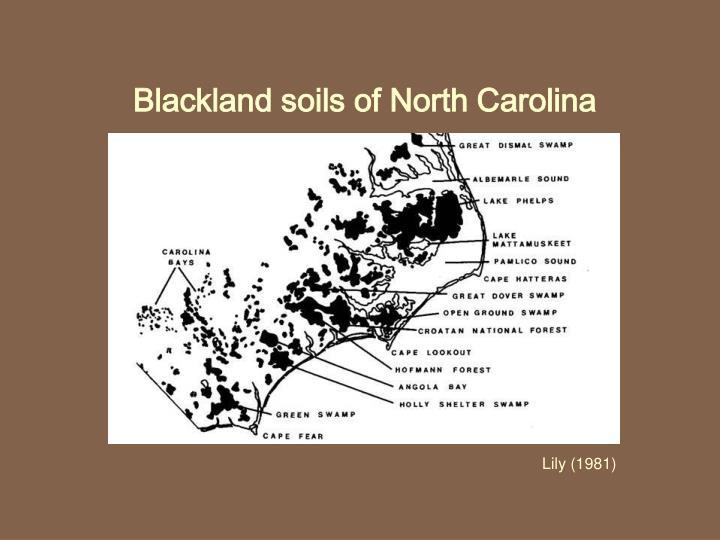 Blackland soils of North Carolina