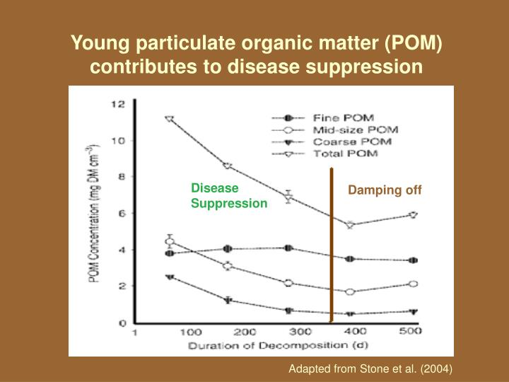 Young particulate organic matter (POM) contributes to disease suppression