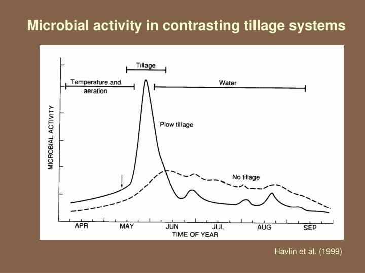 Microbial activity in contrasting tillage systems
