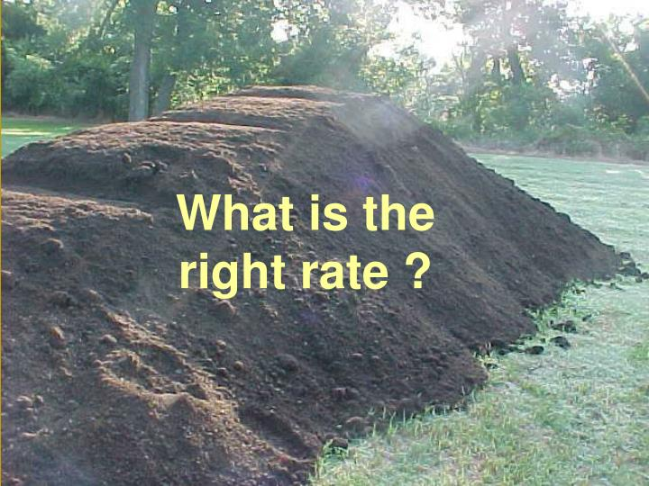 What is the right rate ?