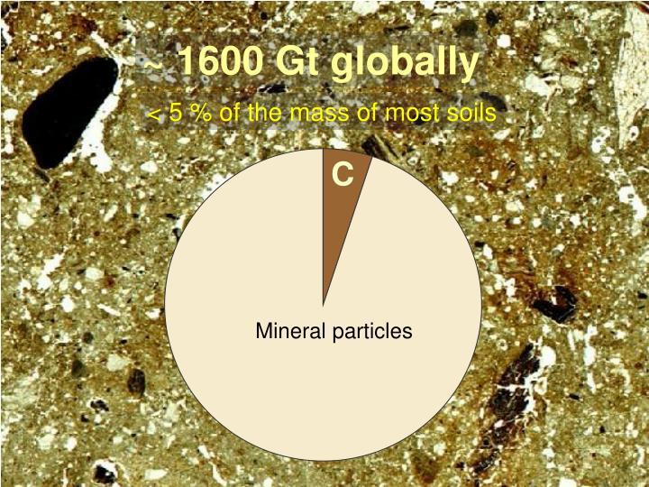 ~ 1600 Gt globally