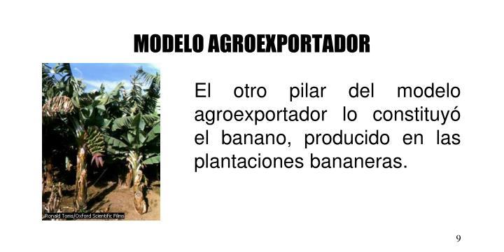 MODELO AGROEXPORTADOR