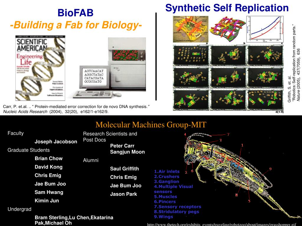 Synthetic Self Replication