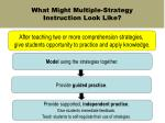 what might multiple strategy instruction look like