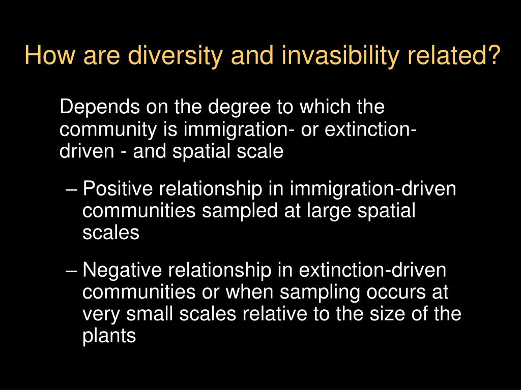 How are diversity and invasibility related?