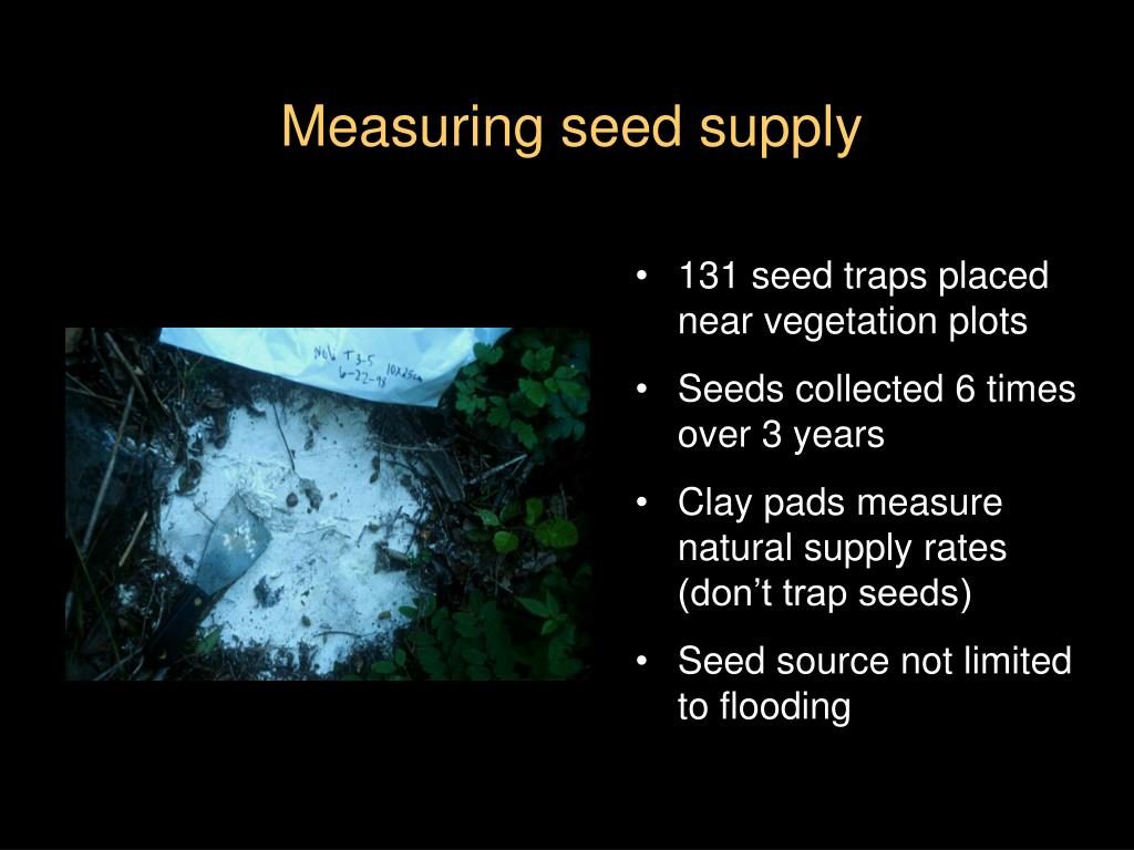 131 seed traps placed near vegetation plots