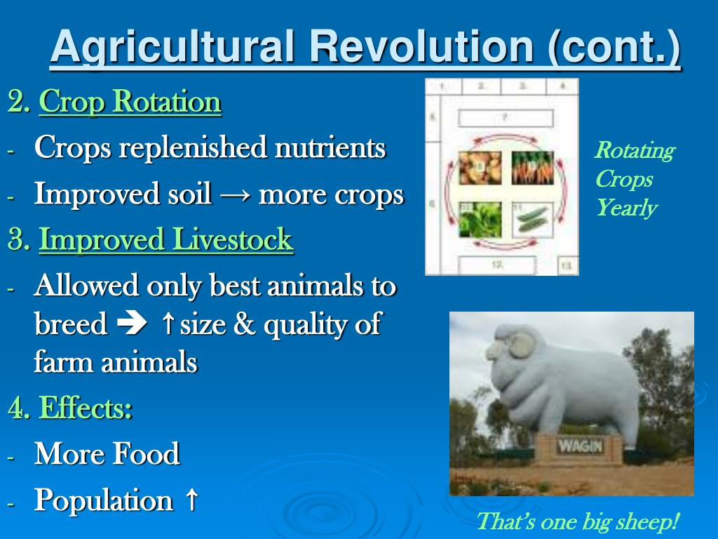 Agricultural Revolution (cont.)