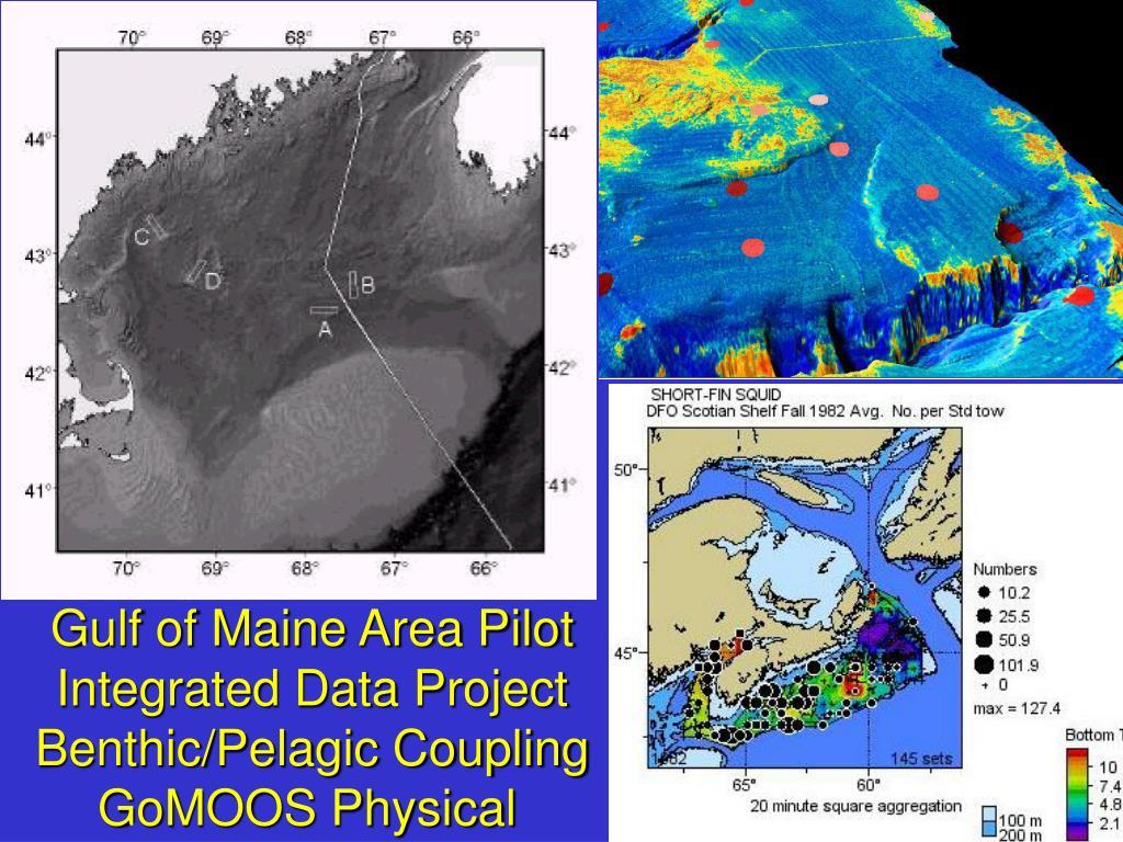 Gulf of Maine Area Pilot