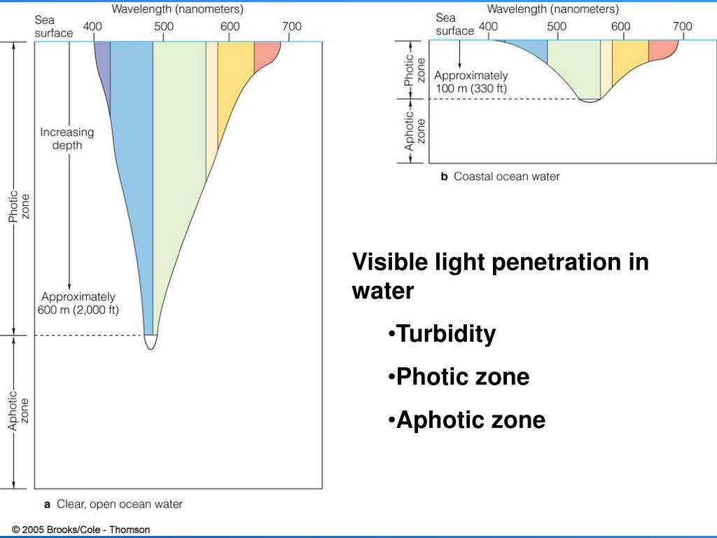Visible light penetration in water