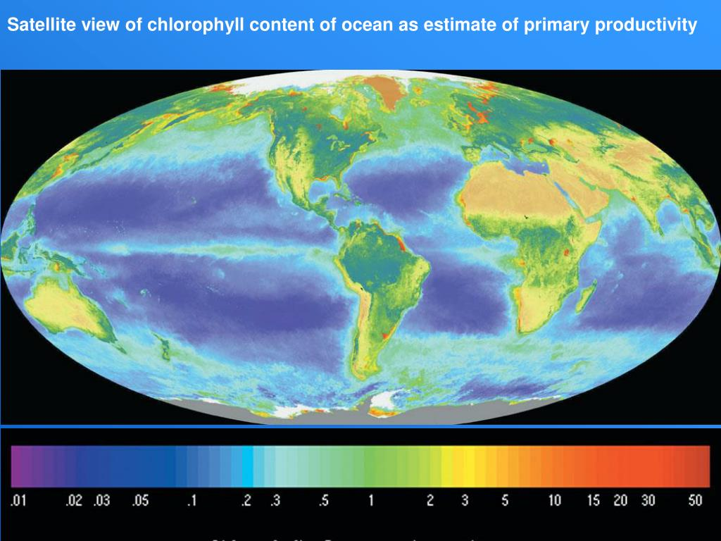 Satellite view of chlorophyll content of ocean as estimate of primary productivity