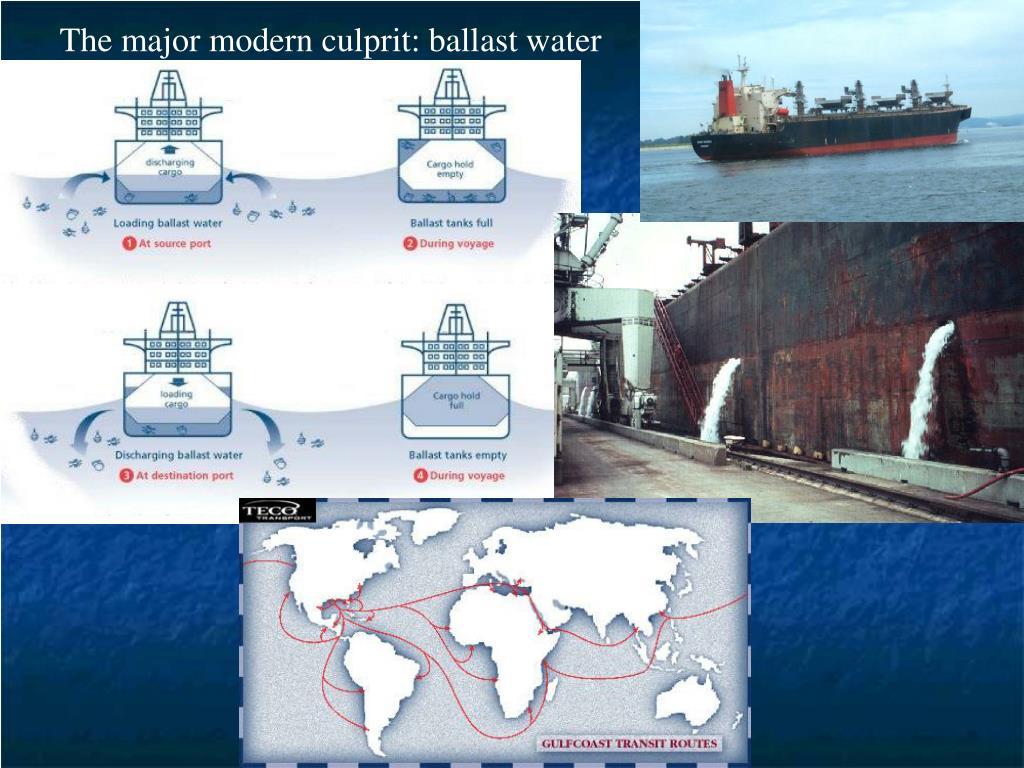 The major modern culprit: ballast water