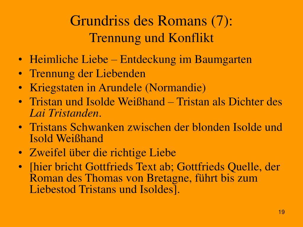 Grundriss des Romans (7):