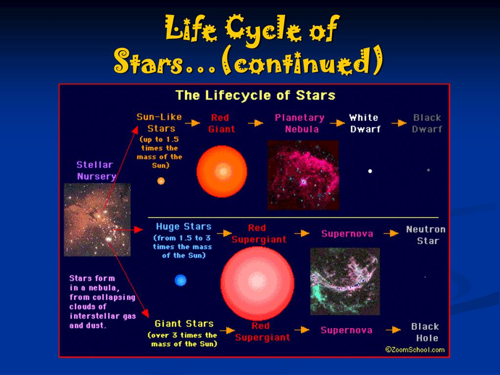 Life Cycle of Stars…(continued)