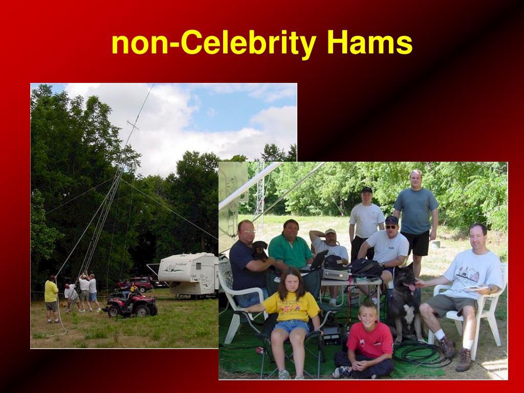 non-Celebrity Hams