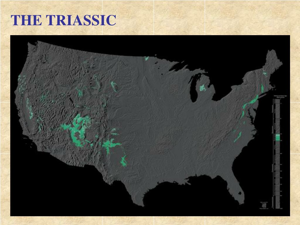 THE TRIASSIC