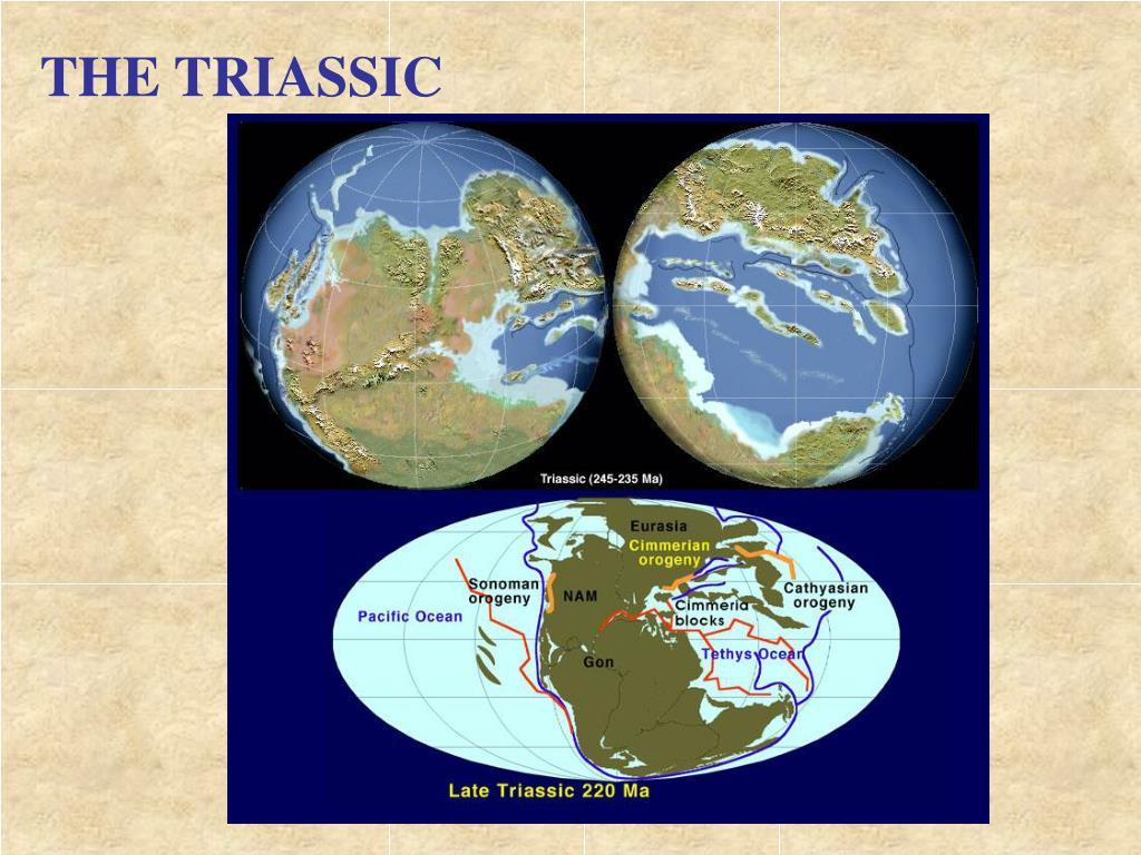 THE TRIASSIC