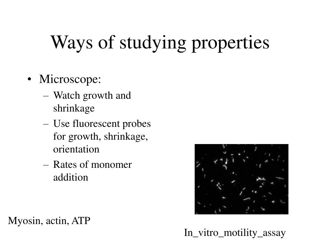 Ways of studying properties