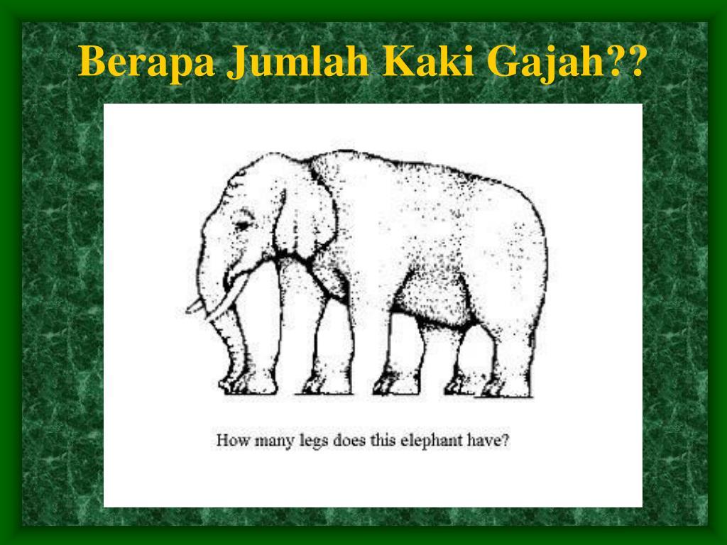 Berapa Jumlah Kaki Gajah??