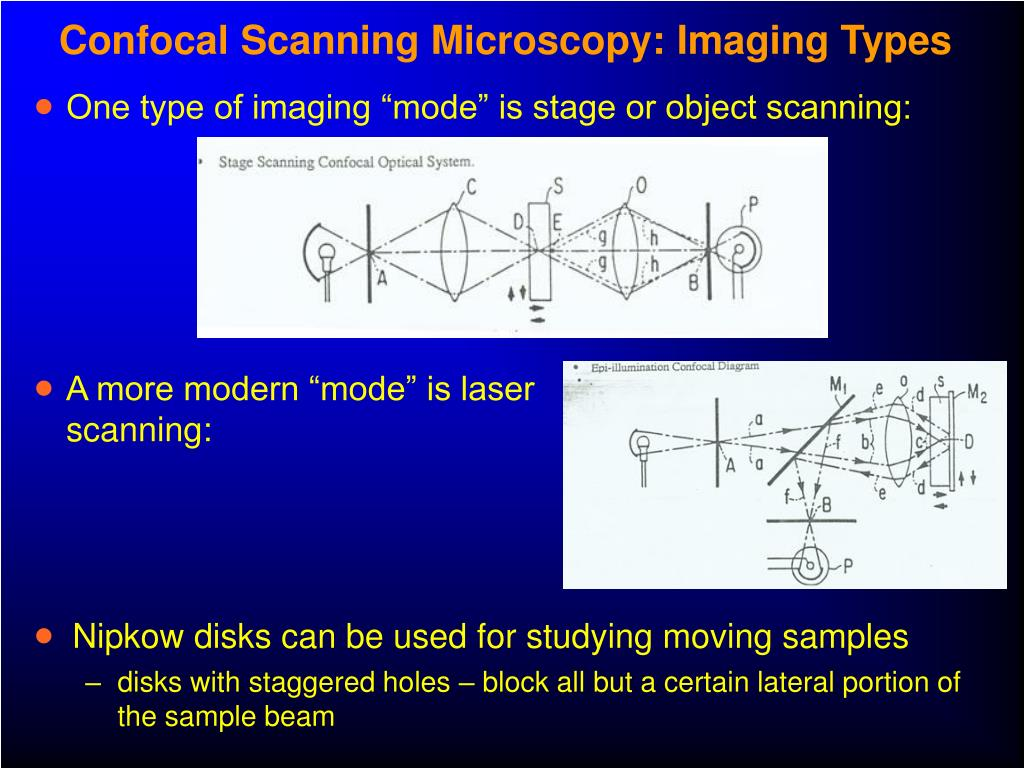 Confocal Scanning Microscopy: Imaging Types