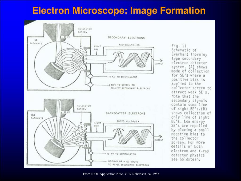 Electron Microscope: Image Formation