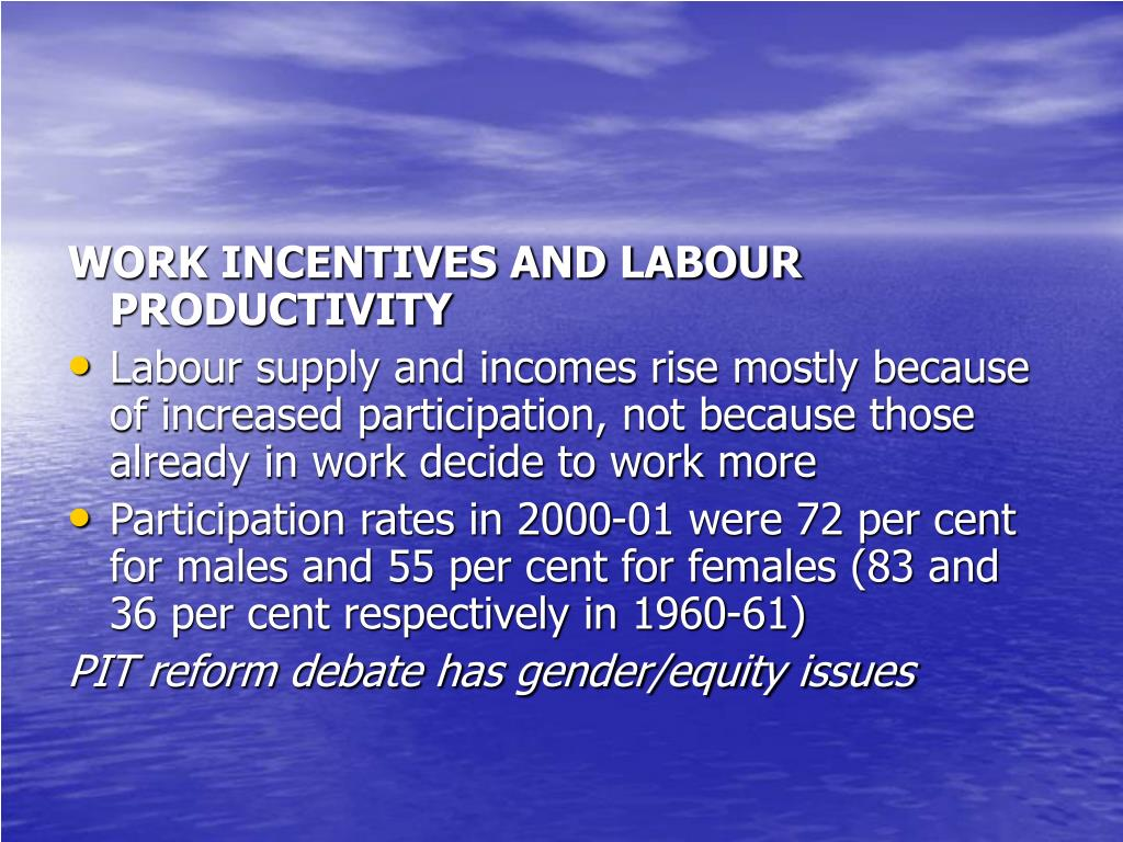 WORK INCENTIVES AND LABOUR PRODUCTIVITY