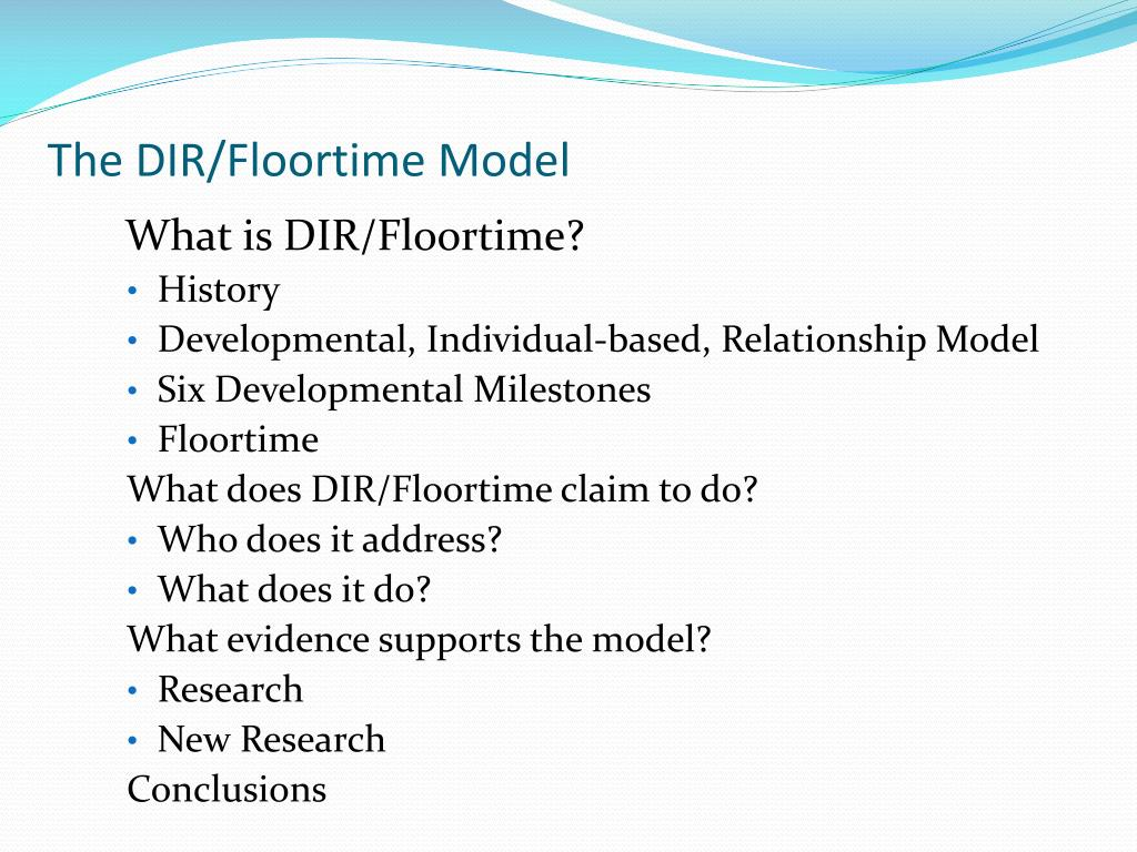 The DIR/Floortime Model