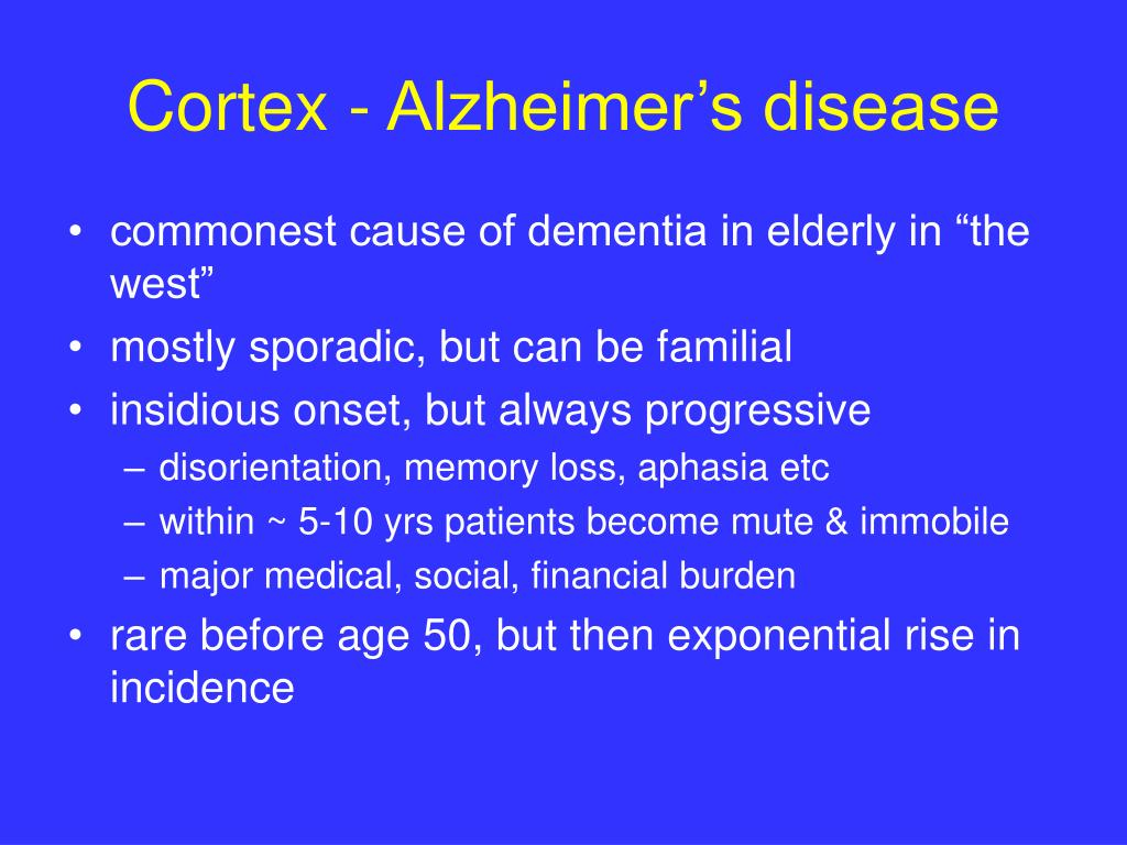 Cortex - Alzheimer's disease