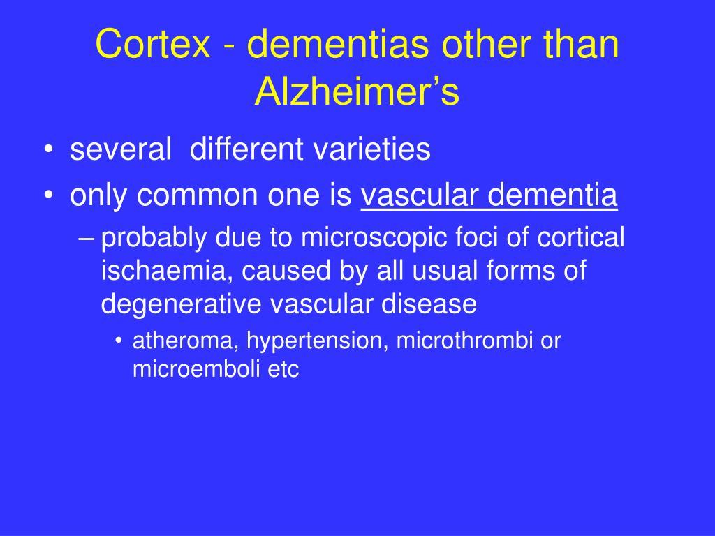 Cortex - dementias other than Alzheimer's