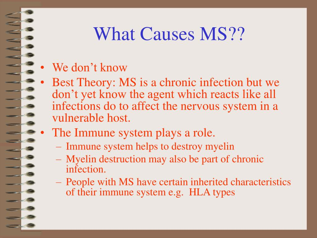 What Causes MS??