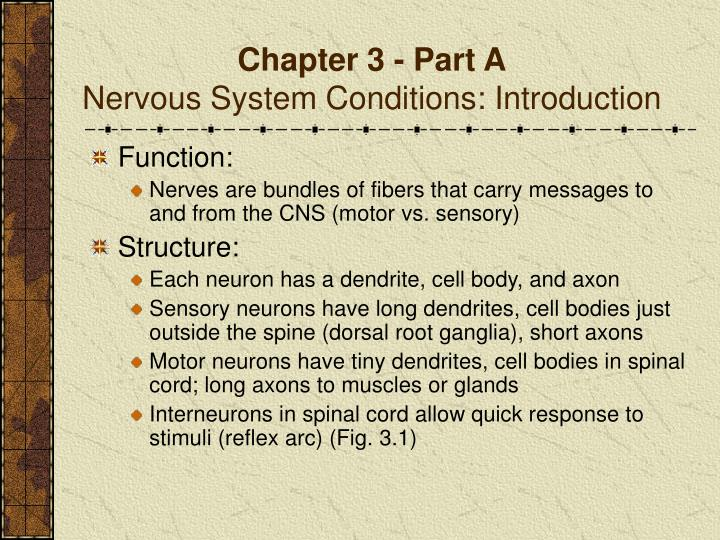 Chapter 3 part a nervous system conditions introduction