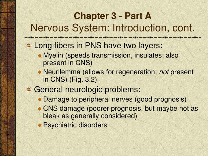 Chapter 3 part a nervous system introduction cont