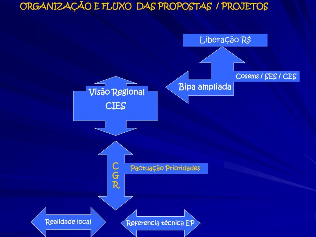 ORGANIZAÇÃO E FLUXO  DAS PROPOSTAS  / PROJETOS