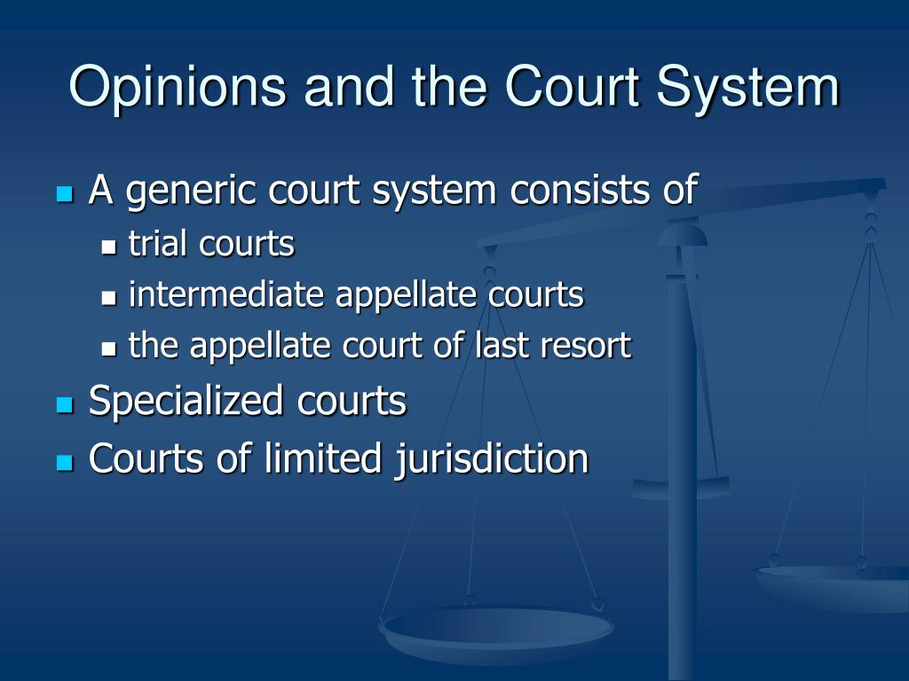Opinions and the Court System