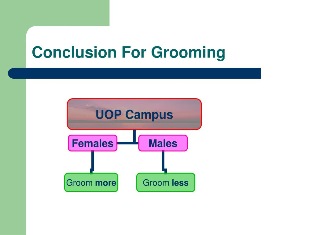 Conclusion For Grooming