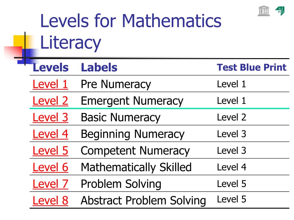 Levels for Mathematics Literacy