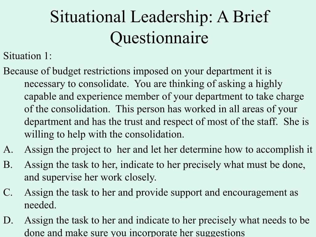 Situational Leadership: A Brief Questionnaire