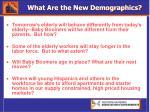 what are the new demographics