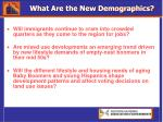 what are the new demographics46