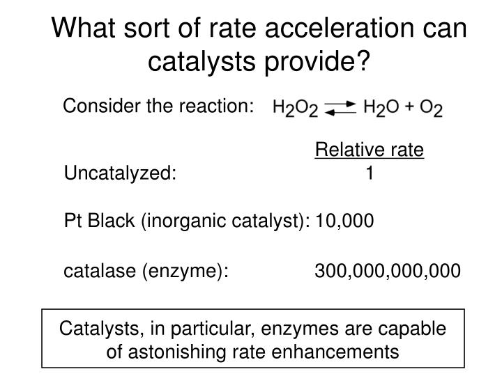 Catalysts, in particular, enzymes are capable of astonishing rate enhancements