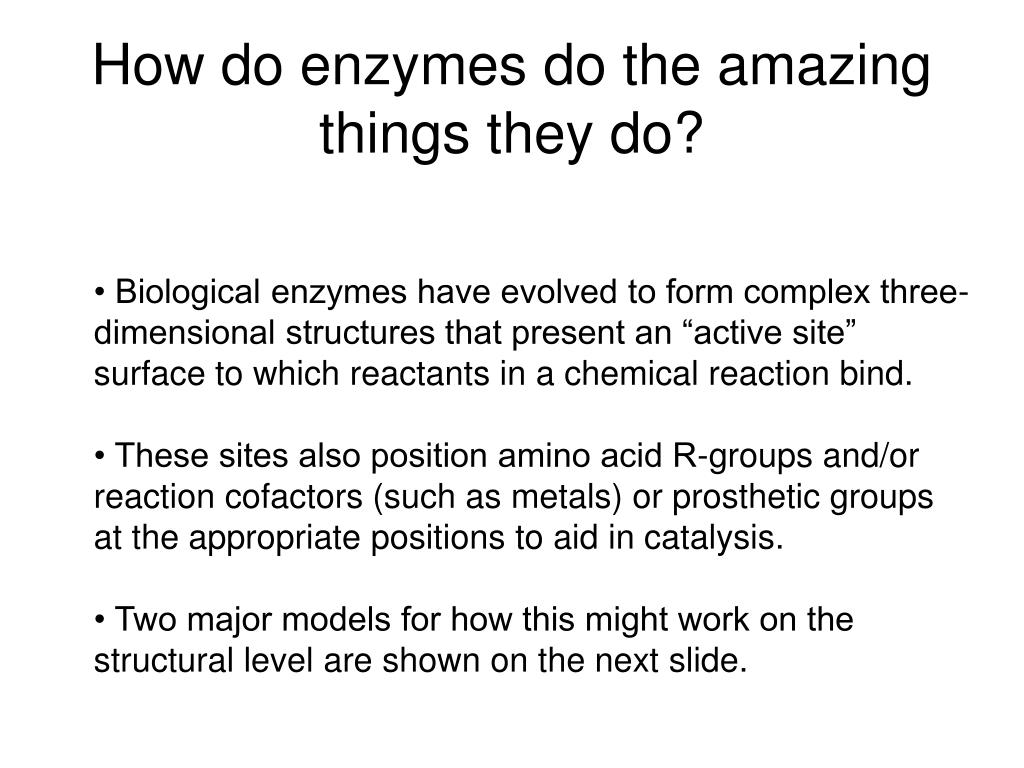How do enzymes do the amazing things they do?