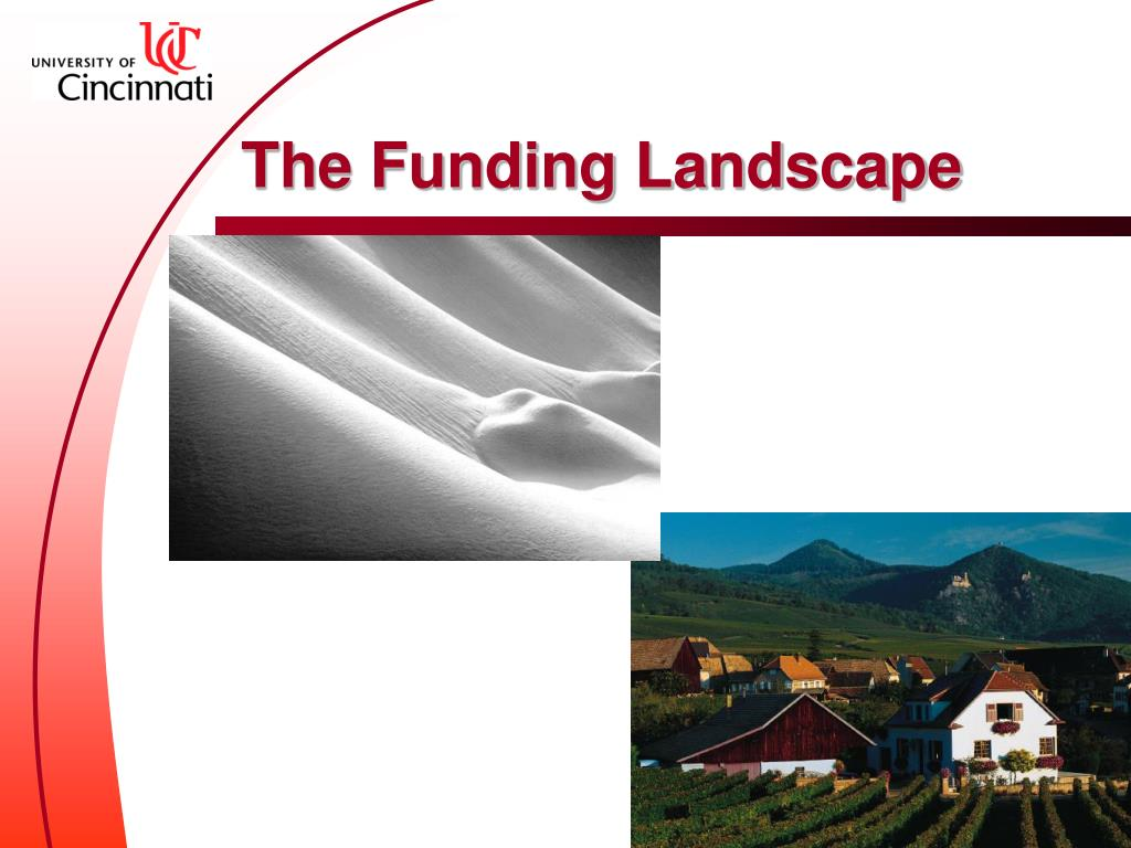 The Funding Landscape