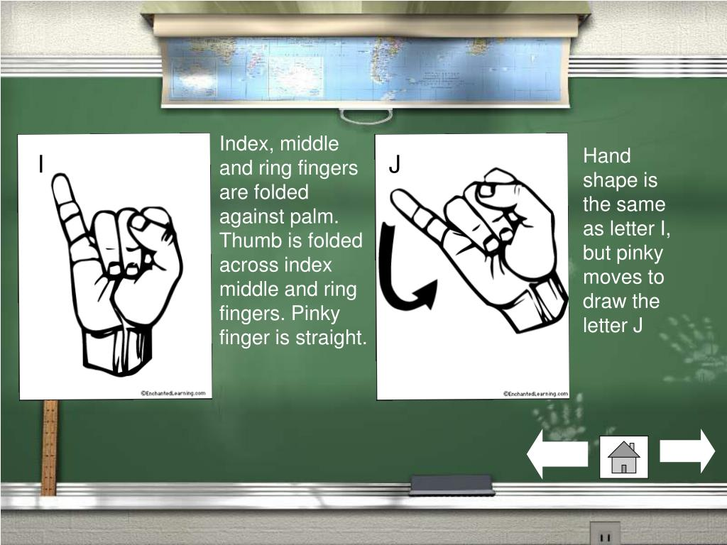 Index, middle and ring fingers are folded against palm. Thumb is folded across index middle and ring fingers. Pinky finger is straight.
