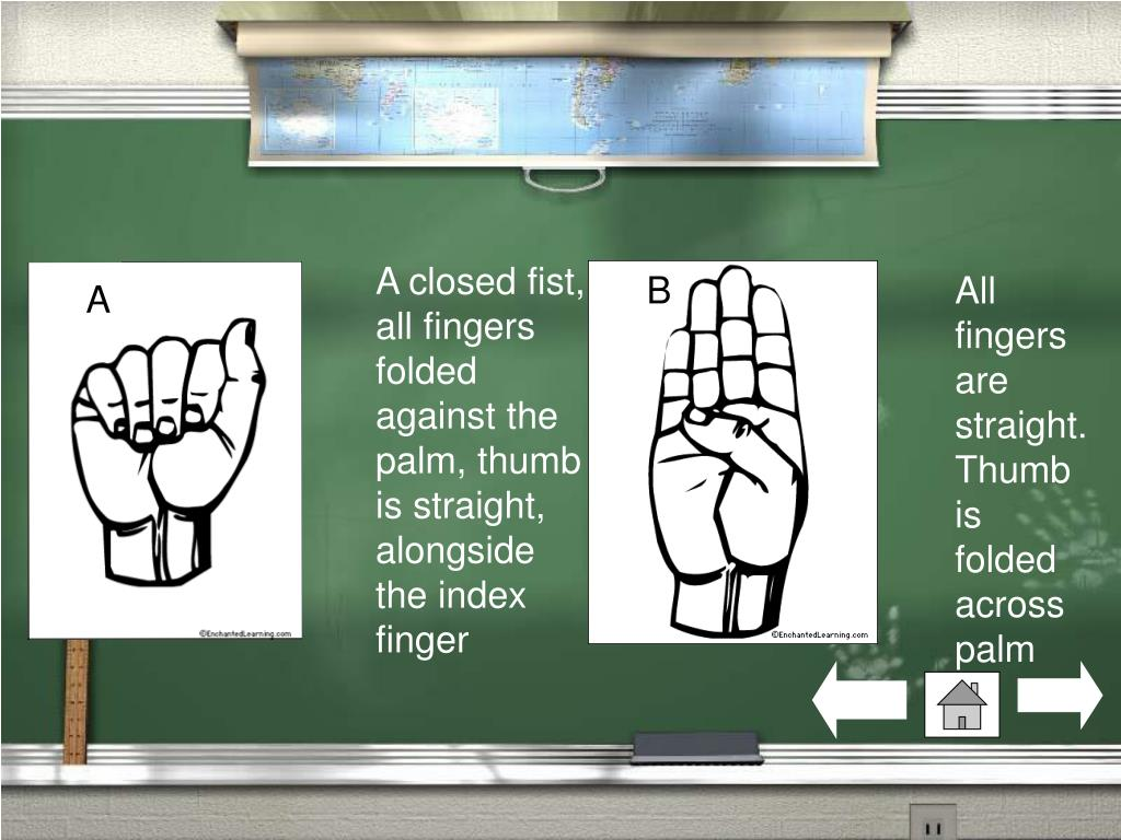 A closed fist, all fingers folded against the palm, thumb is straight, alongside the index finger