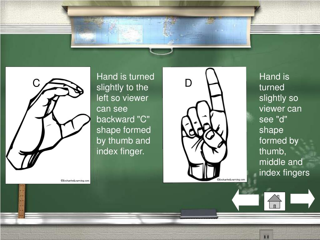 "Hand is turned slightly to the left so viewer can see backward ""C"" shape formed by thumb and index finger."