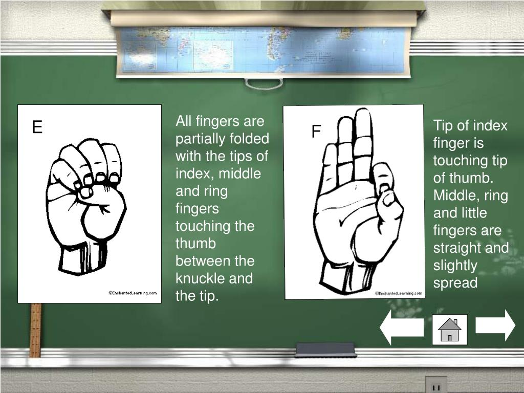 All fingers are partially folded with the tips of index, middle and ring fingers touching the thumb between the knuckle and the tip.