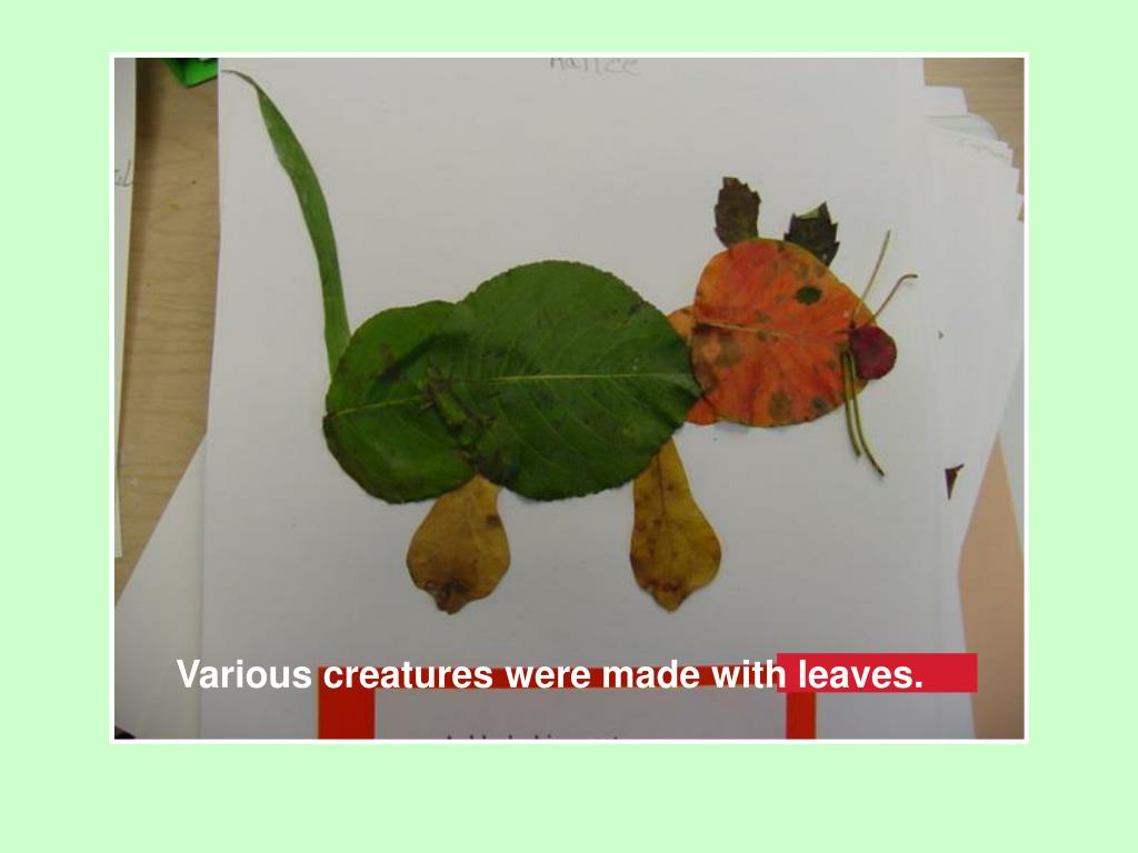 Various creatures were made with leaves.