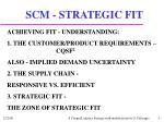 scm strategic fit