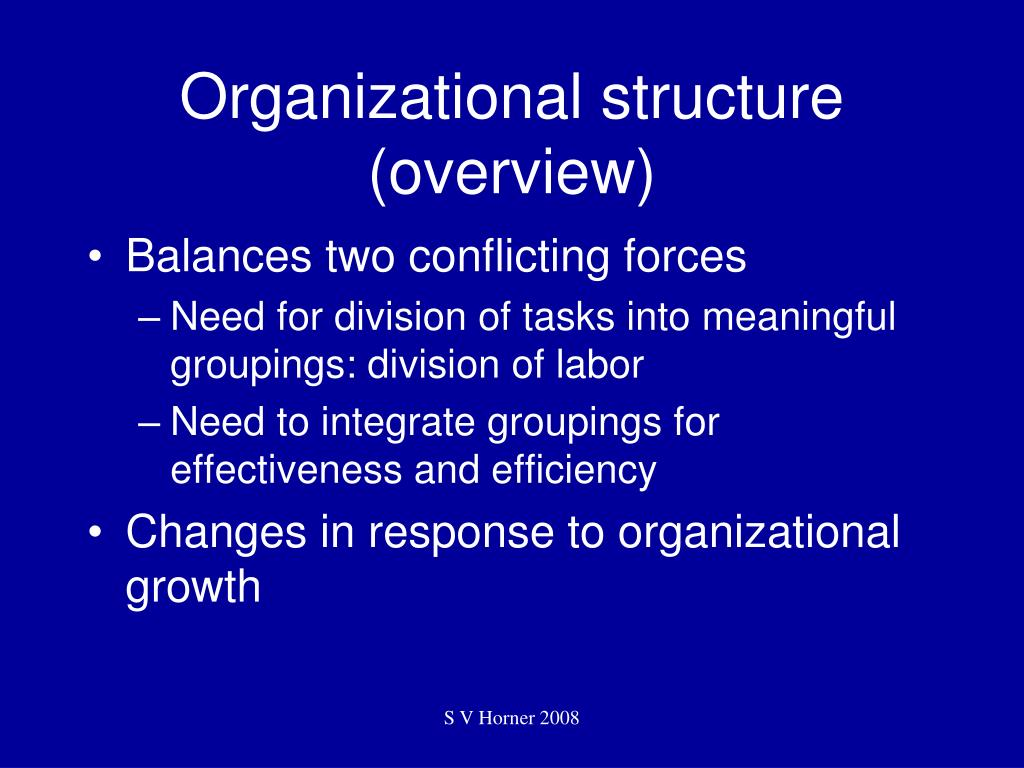 Organizational structure (overview)