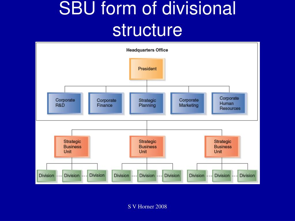 SBU form of divisional structure