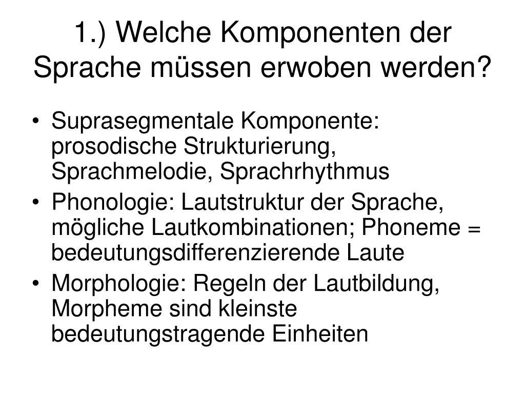 1.) Welche Komponenten der Sprache müssen erwoben werden?